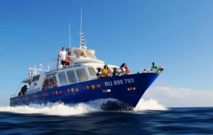 Photo bateau Grand-Bleu